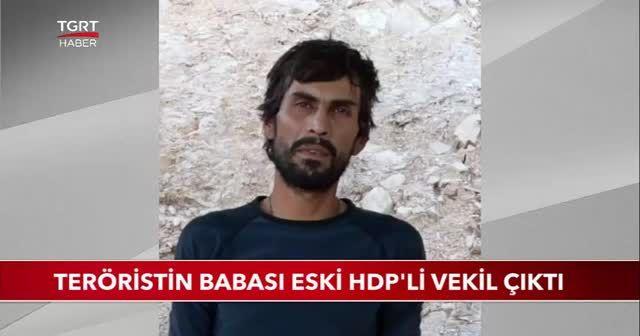 PKK'lının babası HDP'li çıktı