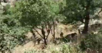Pençe-Kaplan'da kaza: 2 asker şehit