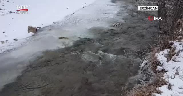 Erzincan buz tuttu