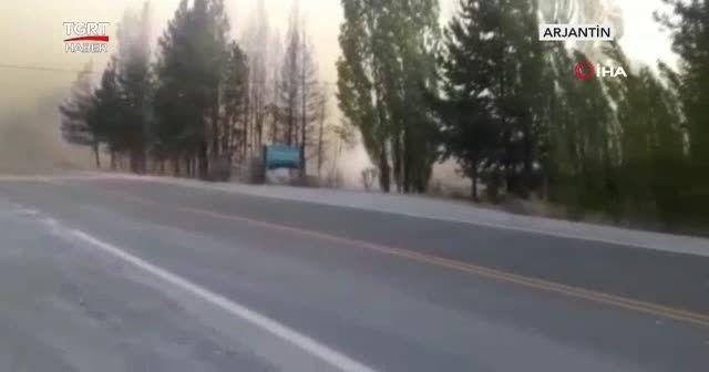 Yangınlar ormanlık alanı kül etti