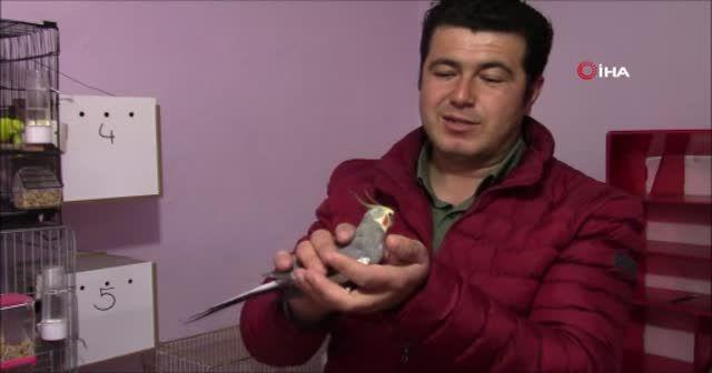 """Her sabah papağan Bitik'in söylediği """"Ölürüm Türkiye'm"""" parçasıyla kalkıyorlar"""