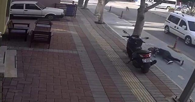 Motosikletin köpeğe çarptığı an saniye saniye kamerada