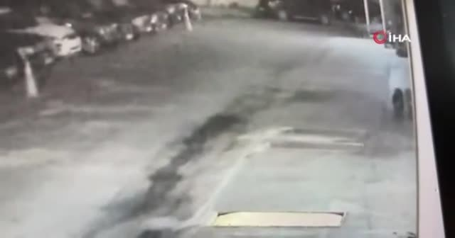 Sarıyer'de vahşet: Yavru köpeği zehirli ok ile vurdu
