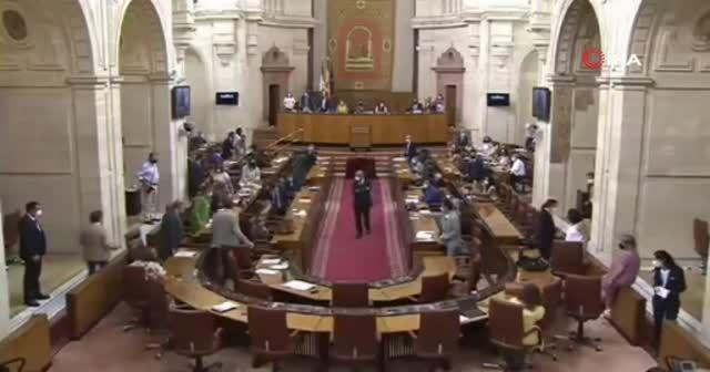 Endülüs Parlamentosu'na giren fare kaosa neden oldu