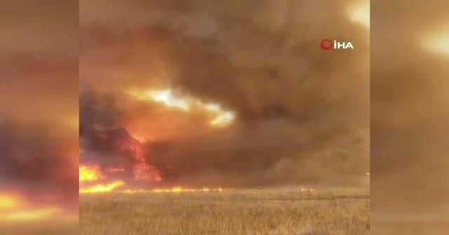 ABD'deki orman yangınında alev hortumu oluştu