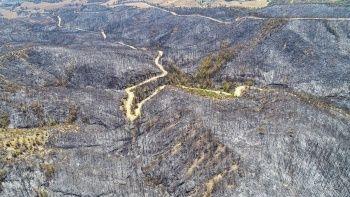 Yürek yakan görüntüler: Yangından geriye kalanlar