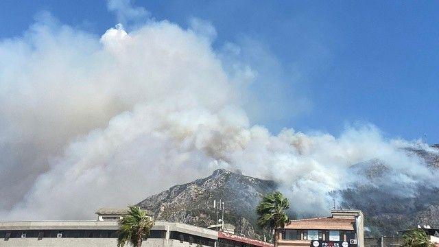 Hatay'daki Neccar Dağı'nda orman yangını
