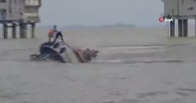Brezilya Donanması'na ait eğitim gemisi Ekvador'da köprüye çarptı